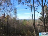 Home for sale: 2.17 Acres Scenic Dr., Lineville, AL 36266