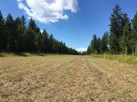 Home for sale: 12 Little Bear Ln., Trout Creek, MT 59874