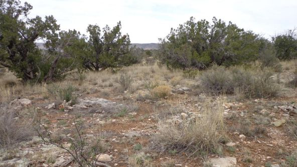 952 Bridge Canyon Unit 5 Lot 952, Seligman, AZ 86337 Photo 8