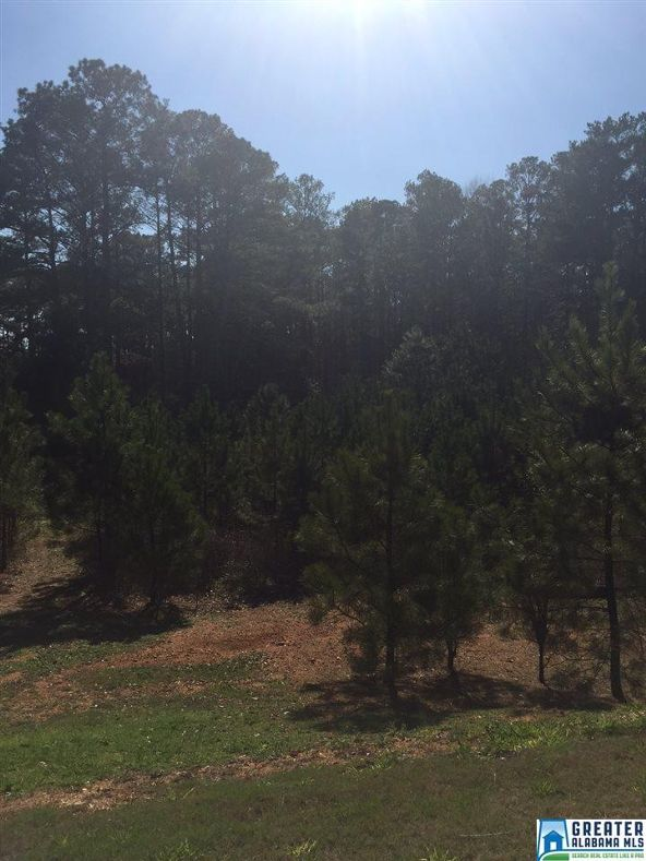 7 Grand Way, Talladega, AL 35160 Photo 1