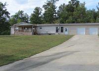 Home for sale: 951 County Rd. 195, Danville, AL 35619