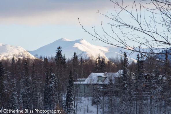 5642 E. 40th Avenue, Anchorage, AK 99504 Photo 1