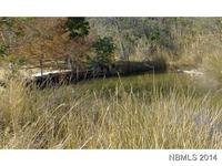 Home for sale: 328 Tom Bland Rd., Bayboro, NC 28515