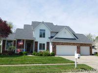 Home for sale: 313 Estes Park Dr., Chatham, IL 62629