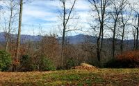 Home for sale: Lt 20 Double Knobs, Hayesville, NC 28904