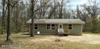 Home for sale: 7216 S. Mikes Trail, Baldwin, MI 49304