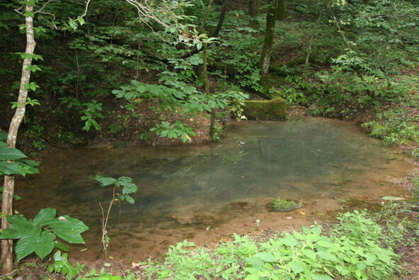 Mount Pleasant Rd., Vonore, TN 37885 Photo 7