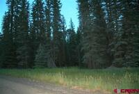 Home for sale: Tbd Vallecito Creek Rd., Bayfield, CO 81122