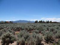 Home for sale: 1 Acre Mesa Vista Rd., Taos, NM 87571