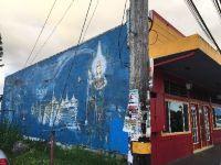 Home for sale: 15-2923 Pahoa Village Rd., Pahoa, HI 96778