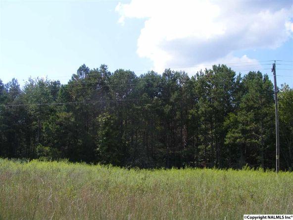 1030 County Rd. 664, Valley Head, AL 35989 Photo 3