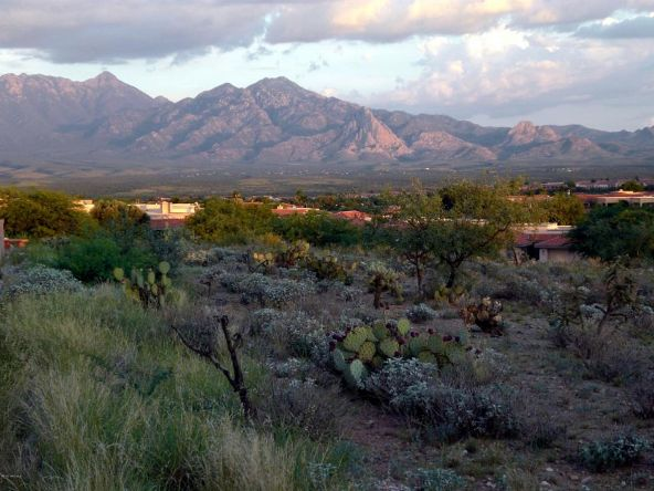 2025 W. Via Nuevo Leon, Green Valley, AZ 85622 Photo 41