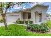 Home for sale: 15431 Osprey Glen Dr., Lithia, FL 33547