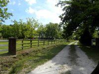 Home for sale: 125 Mcgowan Rd., Jacksonville, NC 28540