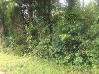 Home for sale: Lyle Cir., Parcel 2, Somerville, AL 35670