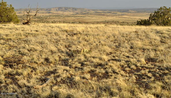 297 Woodridge Ranch, Concho, AZ 85924 Photo 2
