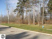 Home for sale: Tbd Chatham Ct., Saint Louis, MI 48880