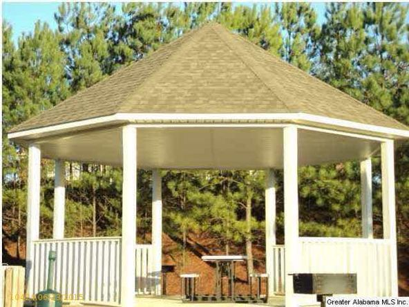 3227 Chapel Hill Pkwy, Fultondale, AL 35068 Photo 18