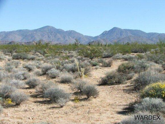 Parc 457 Shadow Ln., Yucca, AZ 86438 Photo 9