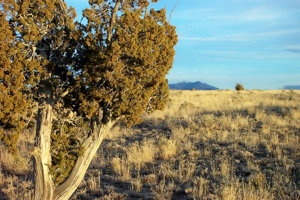 6218 S. Prairie Grass Ln., Williams, AZ 86046 Photo 3