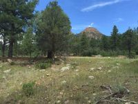 Home for sale: (Lot 29) 80 Wood Rose Ln., Durango, CO 81301