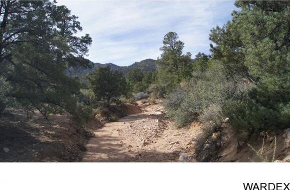 6731 N. Trap Springs Rd., Hackberry, AZ 86411 Photo 16