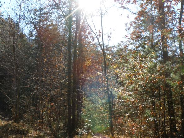 Lot 8 Mountain Rest Way, Sevierville, TN 37876 Photo 16