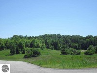 Home for sale: 9 E. Rolling Hills Dr., Traverse City, MI 49684