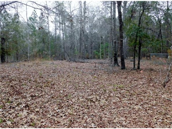 481 Pine Acres Rd., Ramer, AL 36069 Photo 31