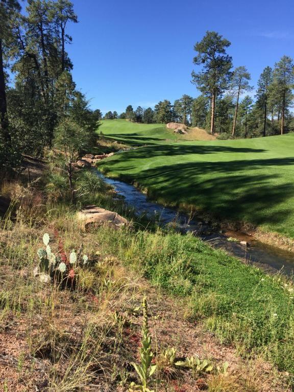 602 S. Pine Strm Stream, Payson, AZ 85541 Photo 8