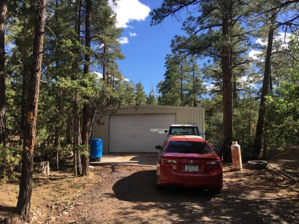 4149 Rim Spur, Lakeside, AZ 85929 Photo 40