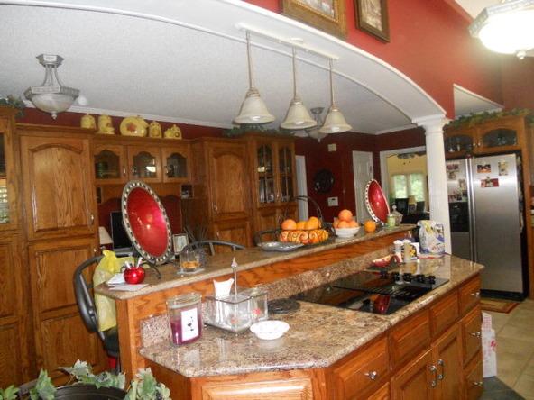 4283 County Rd. 3339, Brundidge, AL 36010 Photo 32