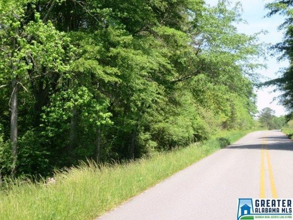 32 Acres Lystra Rd., Ashland, AL 36251 Photo 10