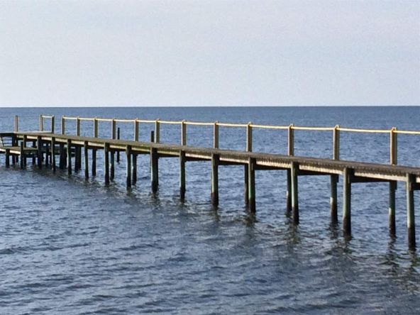 118 White Pelican Way, Carrabelle, FL 32322 Photo 3