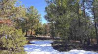 Home for sale: * Gallina Canyon Rd., Valdez, NM 87580