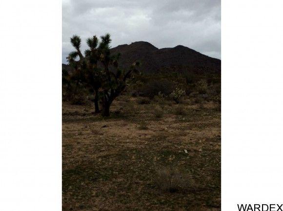 727 Kit Carson, Yucca, AZ 86438 Photo 1
