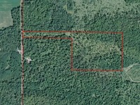 Home for sale: 00 N. County Line Rd., Coleman, MI 48618