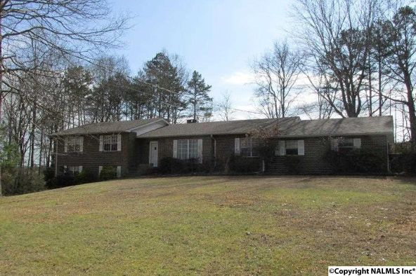385 Skyhaven Dr., Boaz, AL 35956 Photo 7