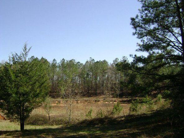 9755 Pineapple Hwy., Greenville, AL 36033 Photo 19