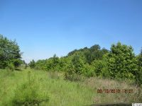 Home for sale: Lot 15 Coleman Ln., Tabor City, NC 28463