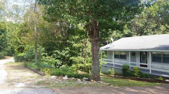 1 Coshise Trace, Cherokee Village, AR 72529 Photo 33