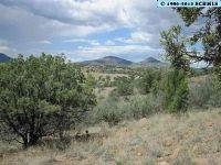 Home for sale: 00 Pinos Altos Rd., Silver City, NM 88061