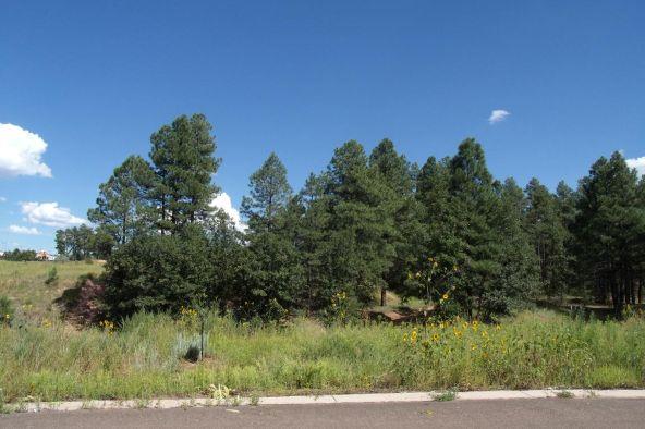 4371 Elk Ln., Show Low, AZ 85901 Photo 3