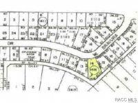 Home for sale: 2590 W. Bravura Dr., Dunnellon, FL 34433