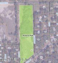 Home for sale: 101 Florence St., Pomona Park, FL 32181