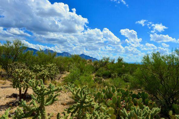 14601 N. Quiet Rain Dr., Oro Valley, AZ 85755 Photo 16