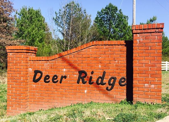 30 Deer Run Cr, Rogersville, AL 35652 Photo 3