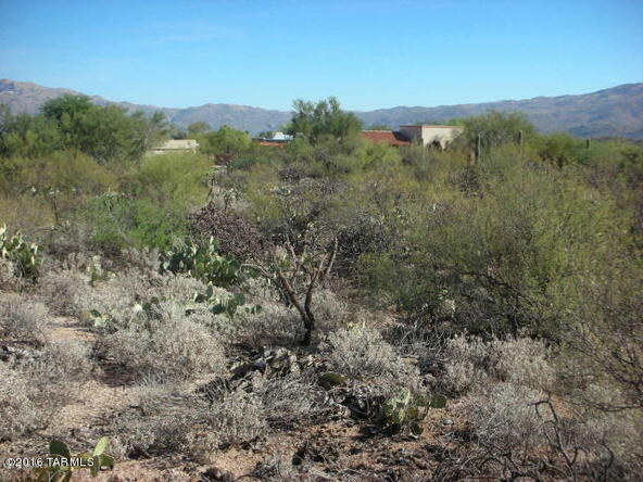 11435 E. Cale Javelina, Tucson, AZ 85748 Photo 11