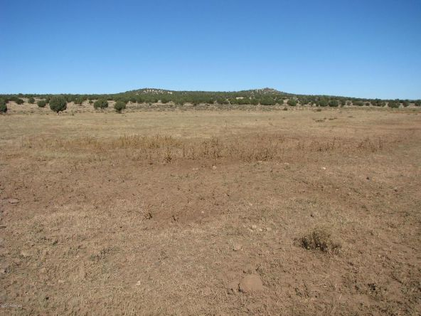 80 Cattle Dr., Ash Fork, AZ 86320 Photo 16