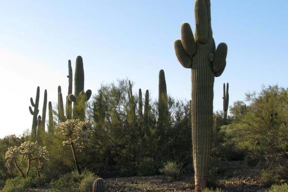 9352 S. Petroglyph Trail, Gold Canyon, AZ 85118 Photo 1